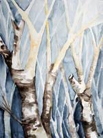 Dreaming Birch Trees by BarbaraPommerenke