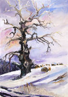 I Have Got Stories To Tell - Old Oak Tree by BarbaraPommerenke