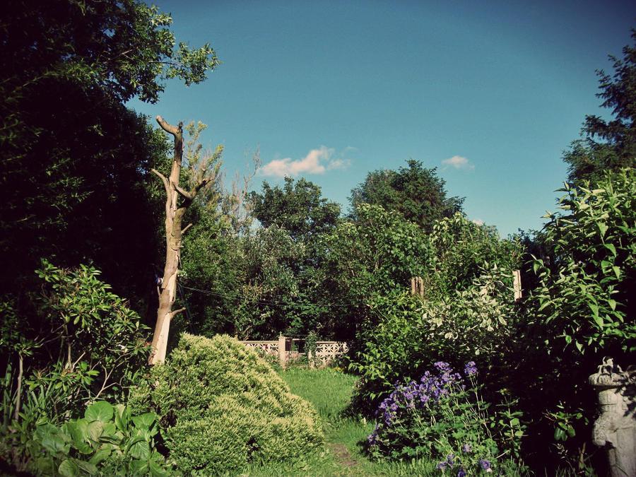 Vintage Garden by ryanr08