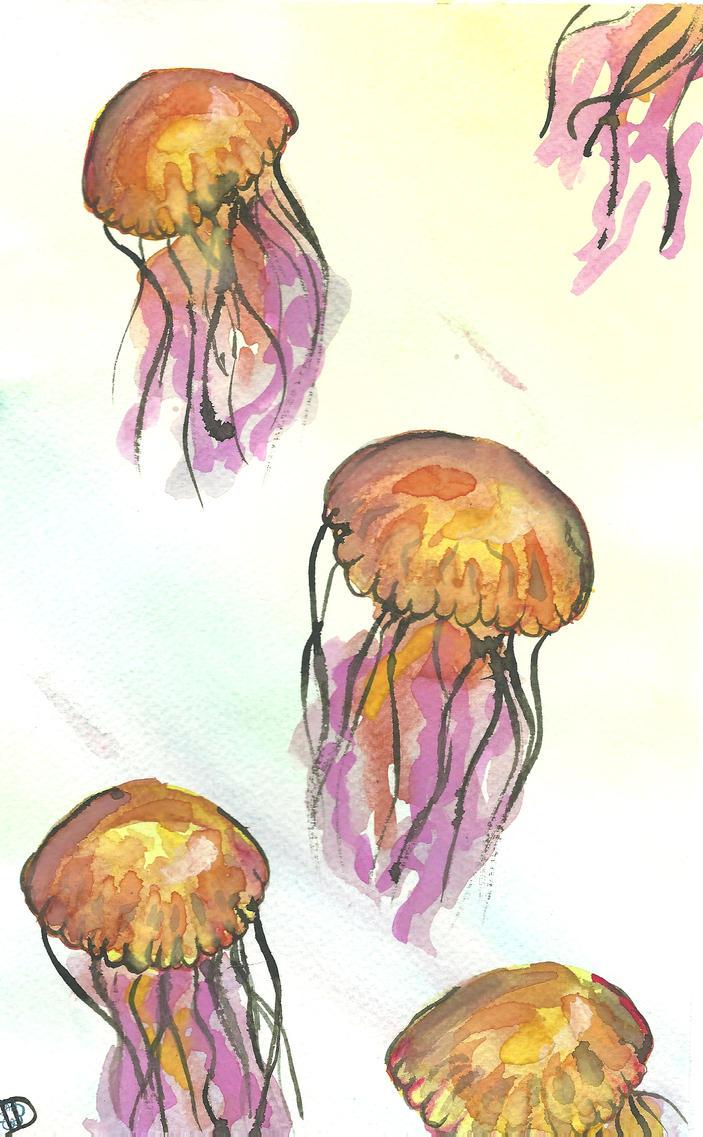 Jellyfish by Adutelluma