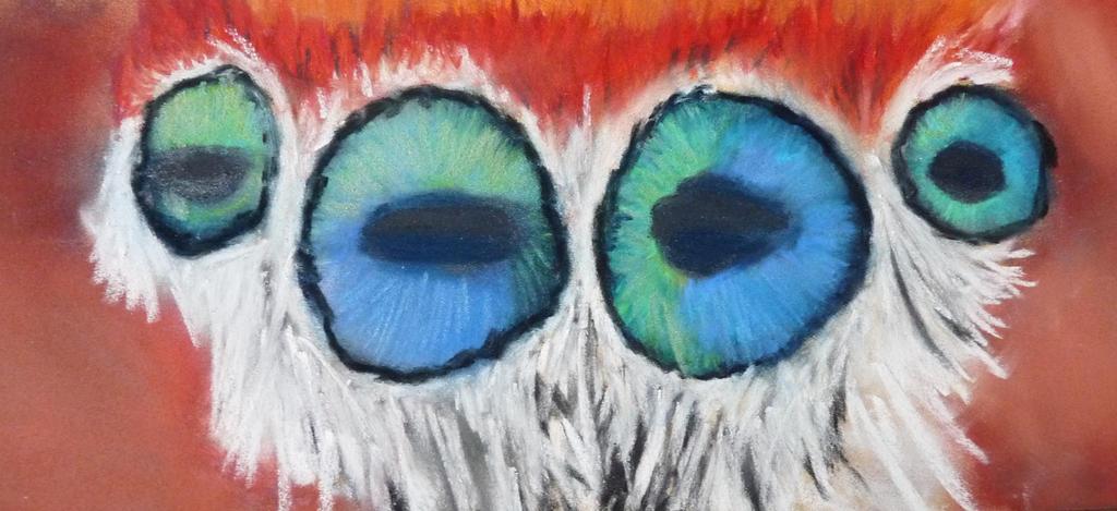 Spider eyes by Adutelluma