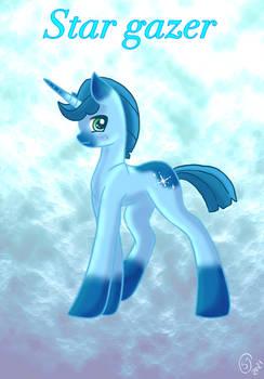Star gazer Unicorn pony