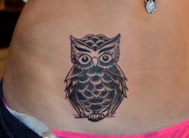 Little Owl by HotWheeler