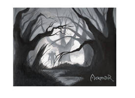 Wandering Paladin by Aerrandir