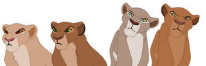 Displeased lionesses base
