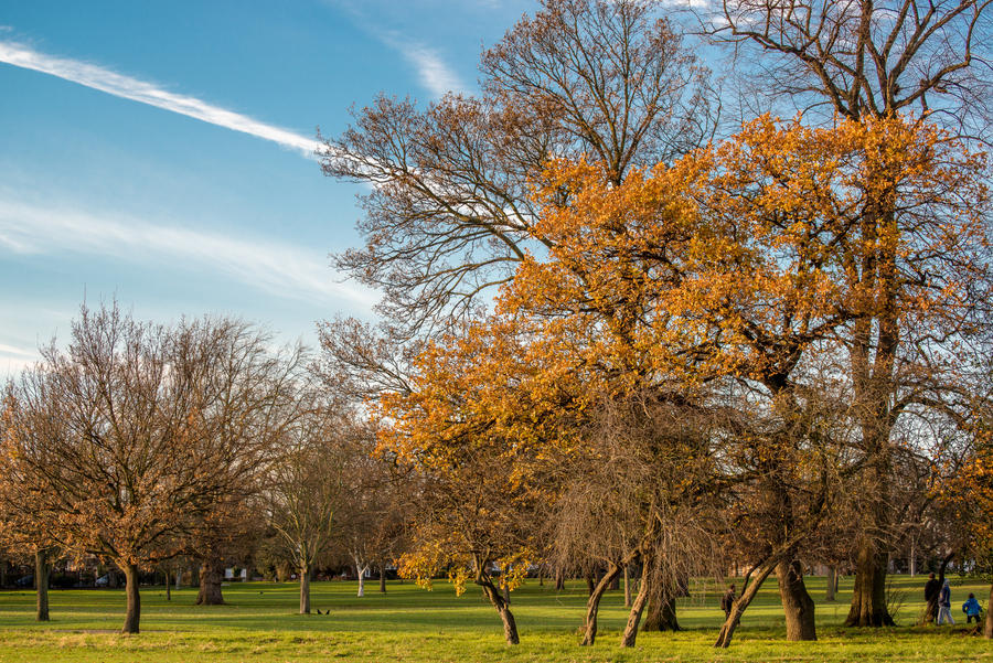Valentines Park   Ilford   London By Dynamick ...
