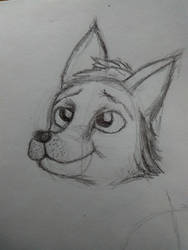 Pup :3 (practicing faces) by JaxTheKomodoDragon