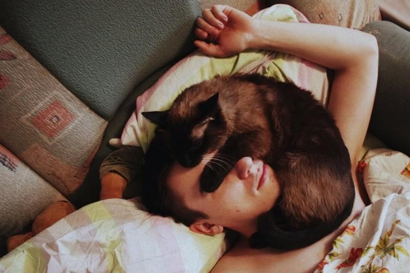 Cat sleeping on dude face