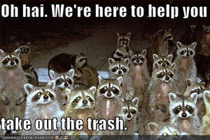 raccoons want's to help to take out your trash. by BloodRavens1