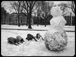 King Snowman - Day 17