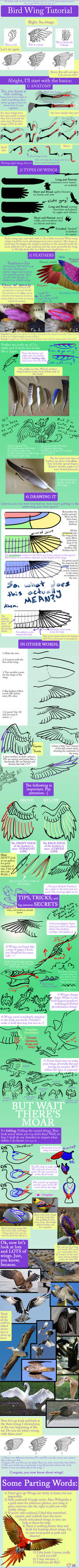 Bird Wing Tutorial
