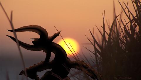 Setting sun diablos by Sand-paper-man