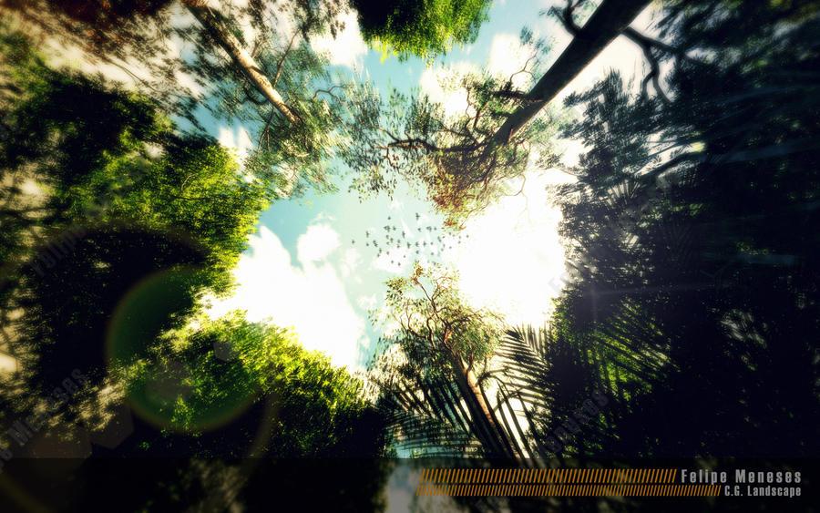 Towards the sky by felipemeneses