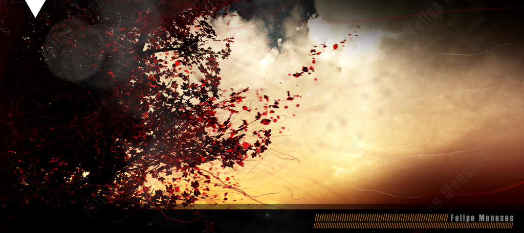 When autumn comes by felipemeneses