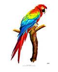 Macaw Parrot - Highlighter Art