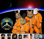 The Lylat Space Program.