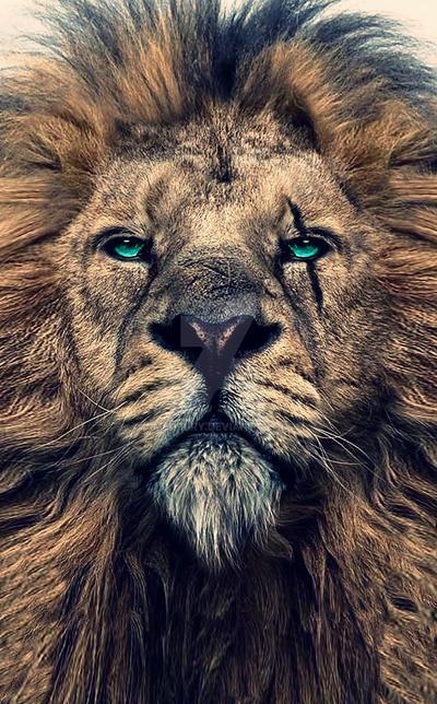 King of Judah by J-MEDBURY
