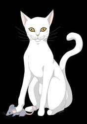 Chat Blanc by silwek