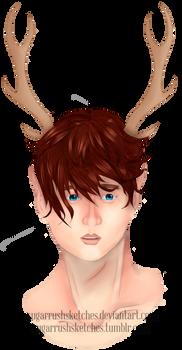 Deer Boy 2017
