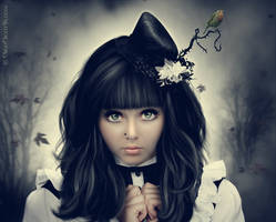 Gothic Lolita by NikkiNightBloom