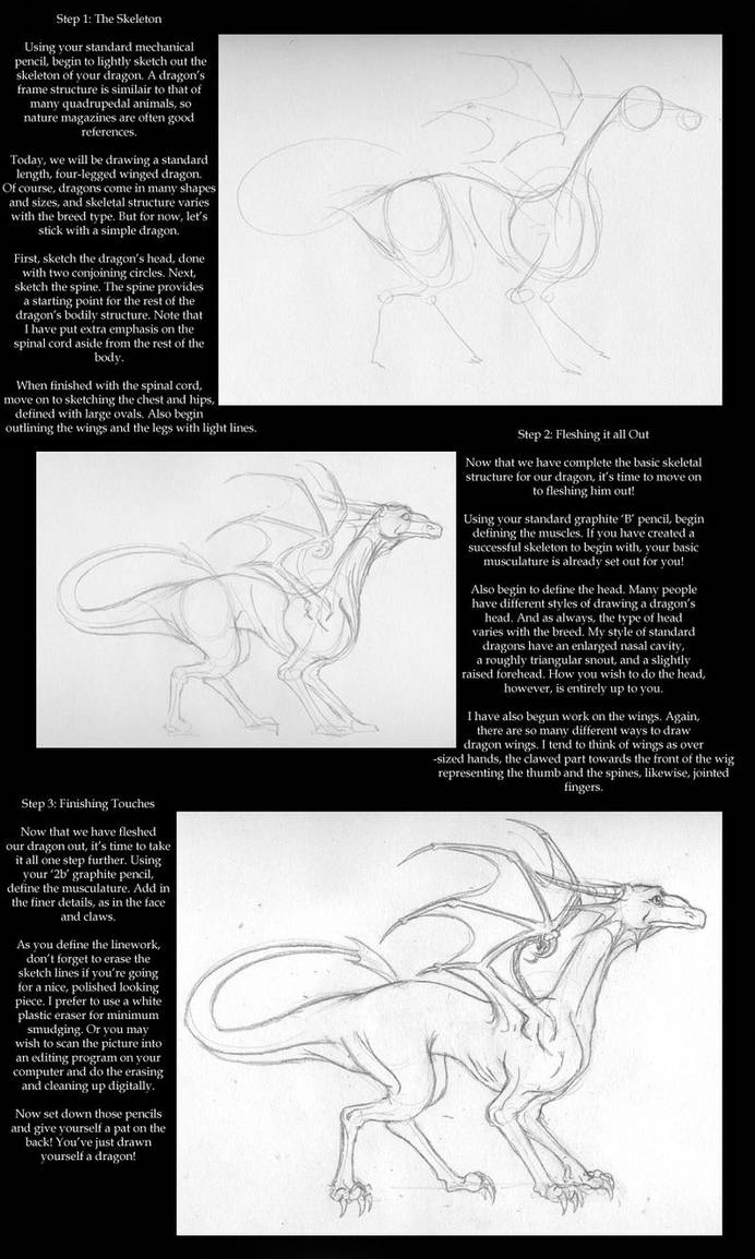 Dragon Drawing Tutorial By Evilyardgnome On Deviantart