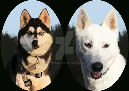 Ayla und Cullen