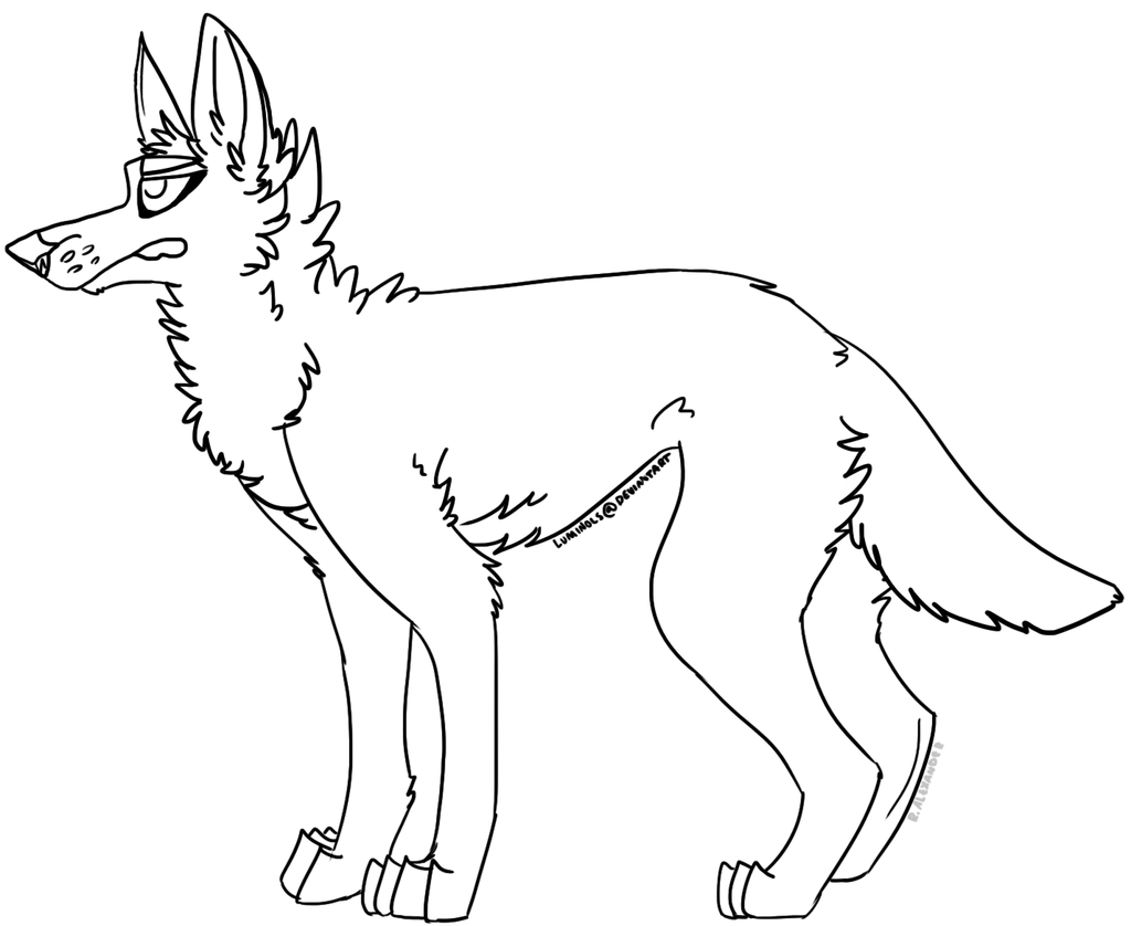 Line Art Dog : Canine lineart free to use by forkbombs on deviantart