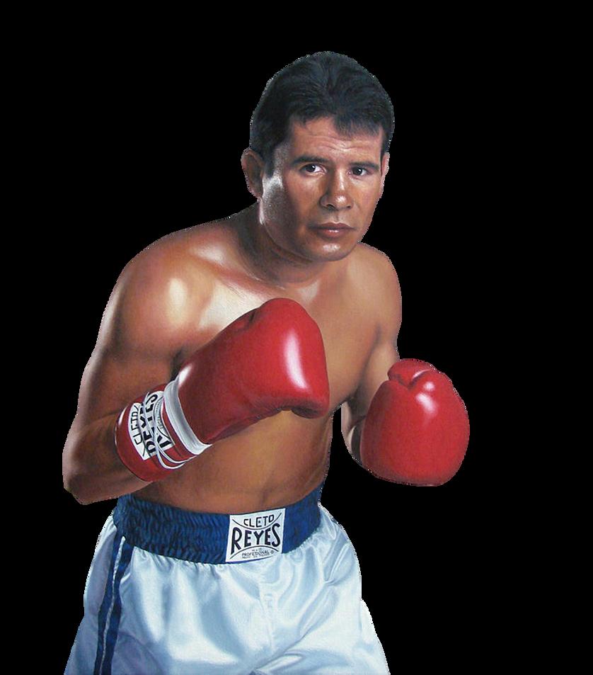 Julio Cesar Chavez Jr avoids $1m fine to make weight for super fight vs  Canelo Alvarez in Las Vegas - Mirror Online