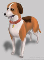 A Dog's Life PS2 - Jake by LTGRAPHIX