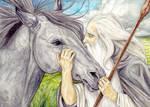 Shadowfax and Gandalf Reunited