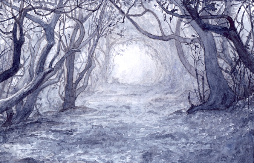 Gloomy Woods by peet