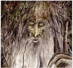Treebeard/Fangorn