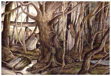 Searching Fangorn Forest