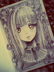Okami by MilaPack