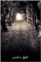 Path To Light by bliitz