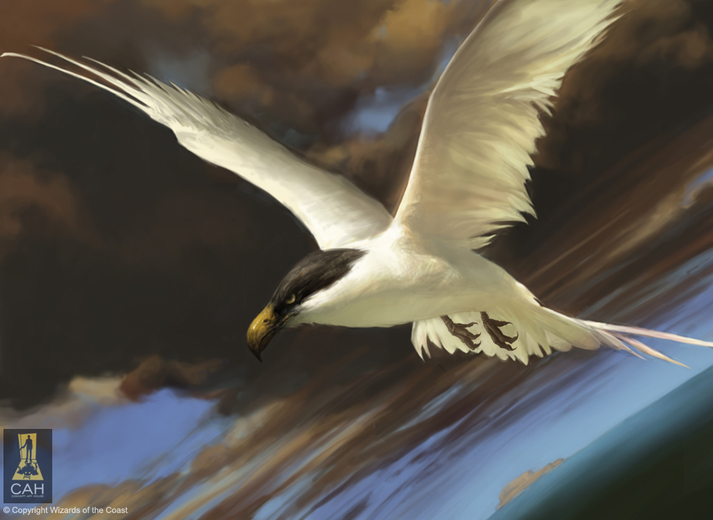 Welkin Tern by Concept-Art-House