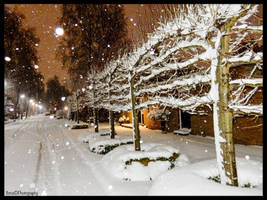 DECEMBER, SNOW IN OUR STREET ! by IME54-ART