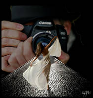 THE PHOTOGRAPHER by IME54-ART