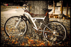 BICYCLE by IME54-ART