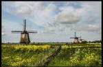 SCHERMER MILLS IN THE NETHERLANDS