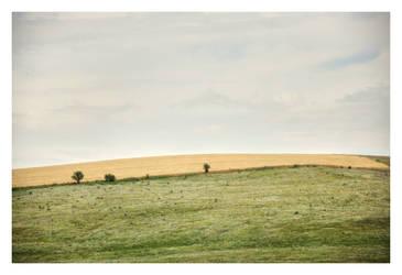 Simplicity by Zelma1