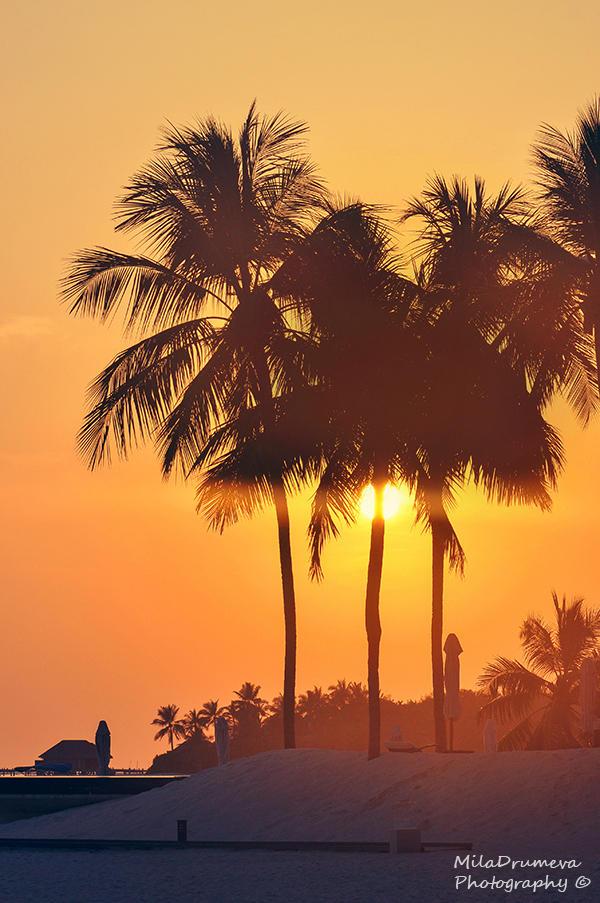 Maldivian sunset by Zelma1