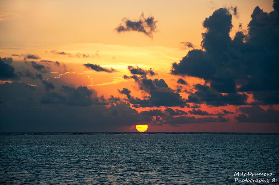 Goodbye, Sun! by Zelma1