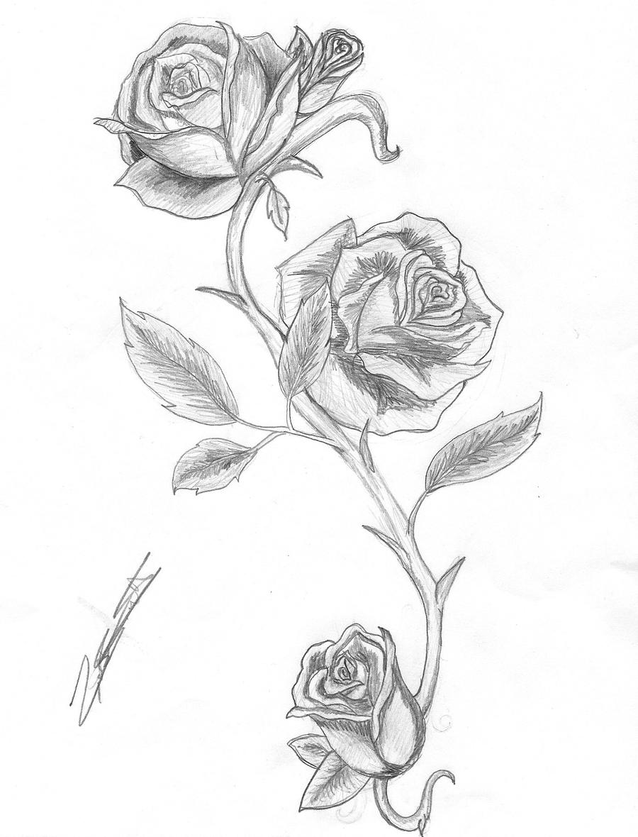 Rose and thorns by isalwaysinspired on deviantart for Rose with thorns tattoo