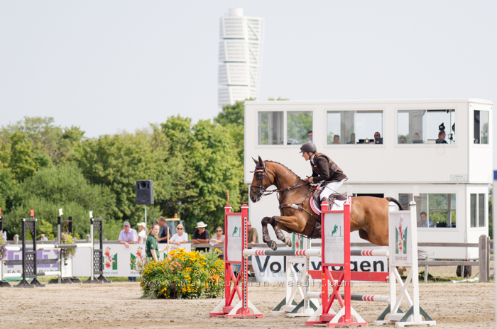 Horse jump by Pebels