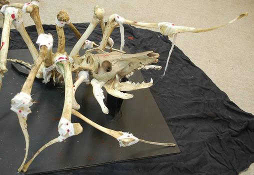 large skeleton articulation, spider pig