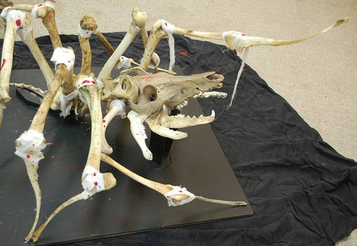 large skeleton articulation, spider pig