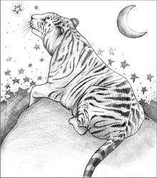 Tiger-tiger love the star by Tanami-M