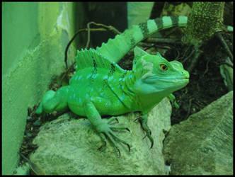 Lookin' Good in Green by TheGrandAdmiral