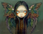 Winged Seer
